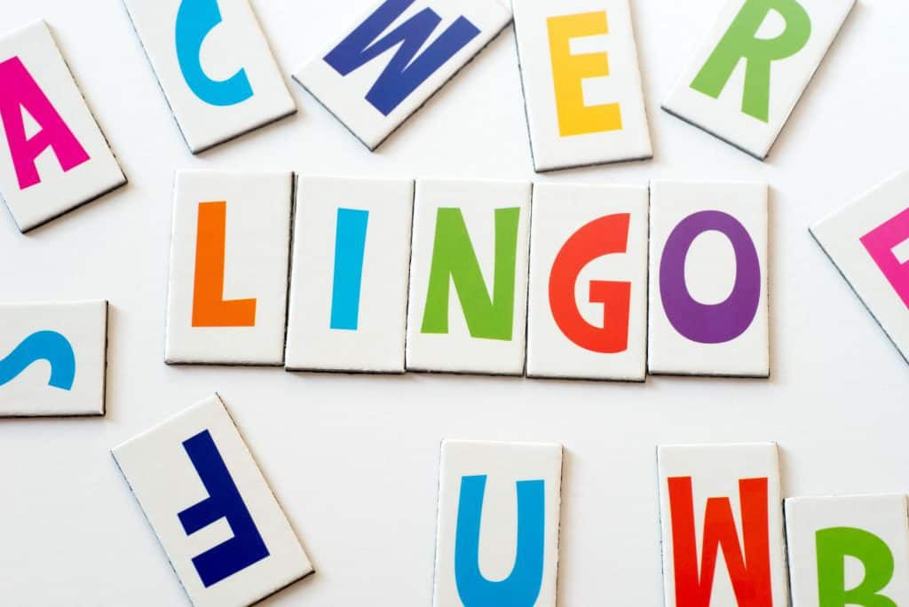 word lingo made of colorful letters on white background; cruise lingo